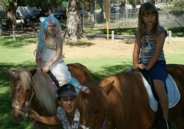 Unicorn Party With 2 Ponies