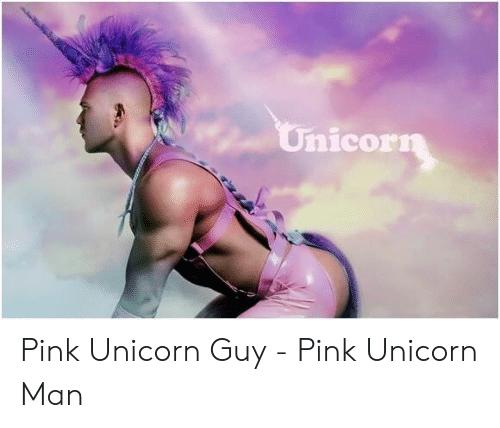 Unicorn Pink Unicorn Guy