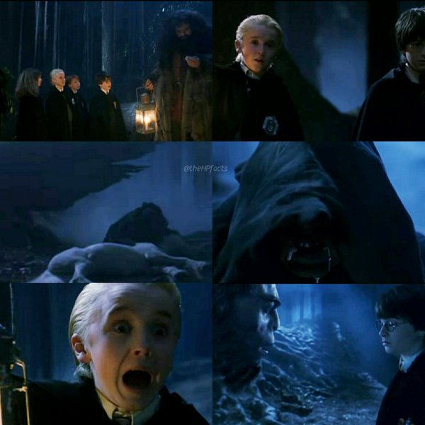 26 May 1992  Harry And Draco Find A Dead Unicorn  A Hooded Figure