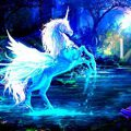 Difference Between Unicorn And Pegasus