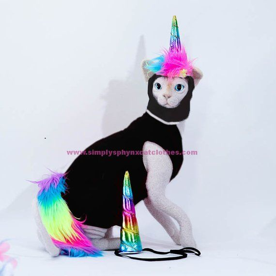 Costumes For Pets Unicorn Cat Costume Pastel Unicorn Horn Hat