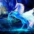 Fantasy Unicorn Images