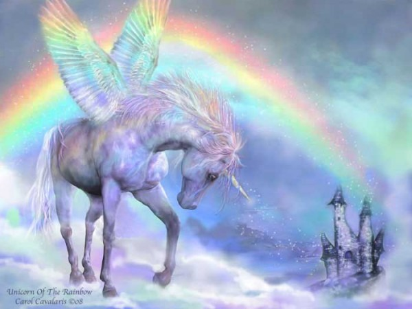 Life Is Not Full Of Rainbows And Unicorns