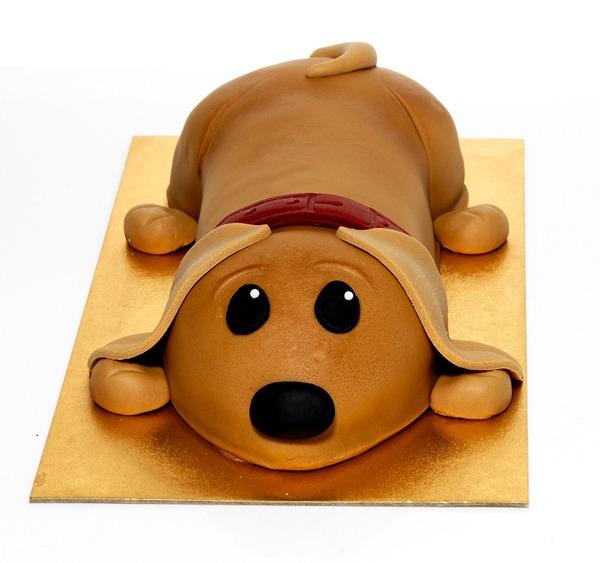 Sainsbury's Launches New Sammy The Sausage Dog Cake!
