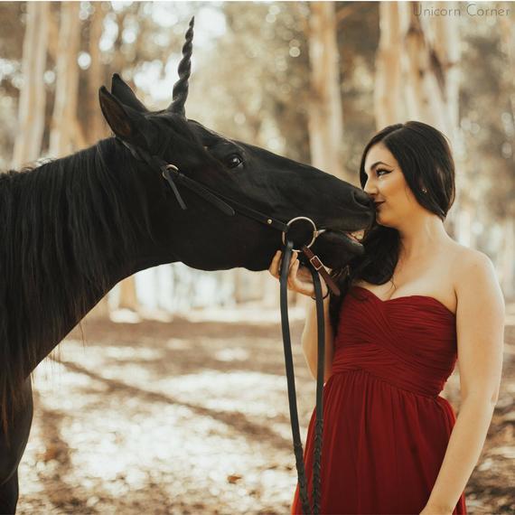 Unicorn Horn For Horse Or Pony   Unicorn Browband   Realistic