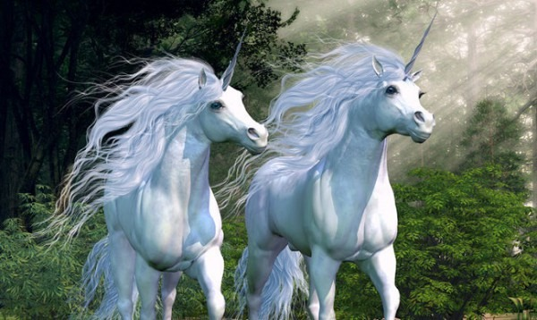 Unicorns  Not Quite Mythical, But A Rarity In South