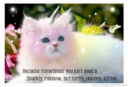 55 Best Unicorn Kitties Images