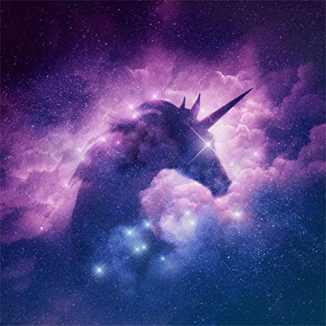 Amazon Com   Lfeey 6x6ft Starry Stars Unicorn Silhouette Backdrop