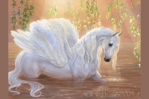 Are You A Pegasus, Unicorn Or Alicorn