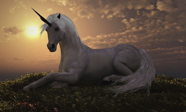 I Believe In Cybercrime Unicorns