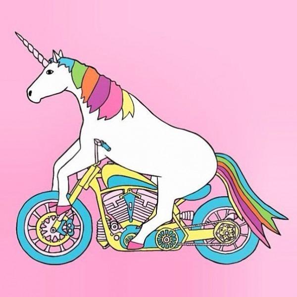 Unicorns  Unicorn On A Motorcycle