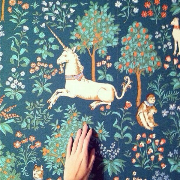 Unicorns And Monkeys In A Forest  Heck Yeah     Wallpaper